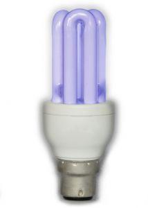 Energie-Spar-Lampe